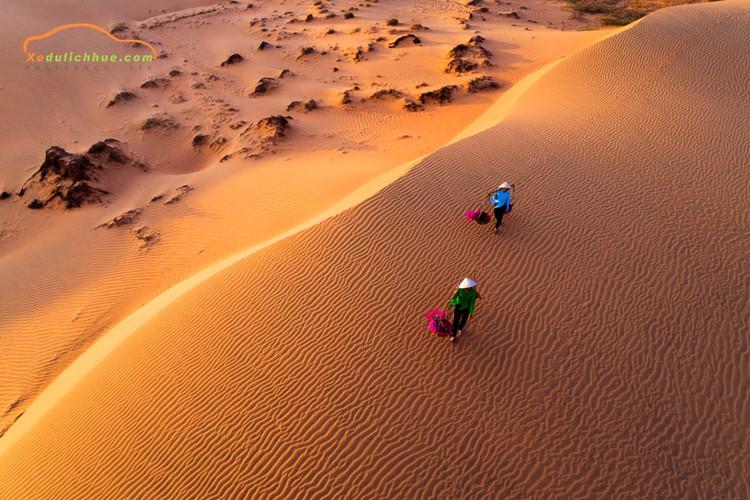 Bãi cát Mũi Né