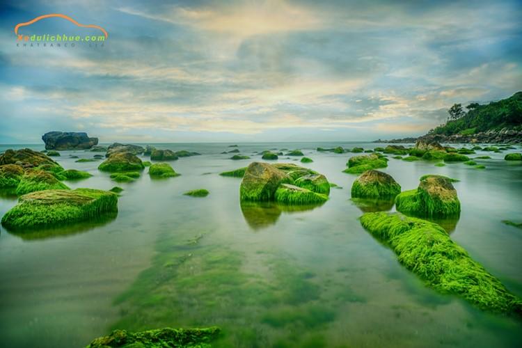 Bãi rêu Nam Ô ở Đà Nẵng