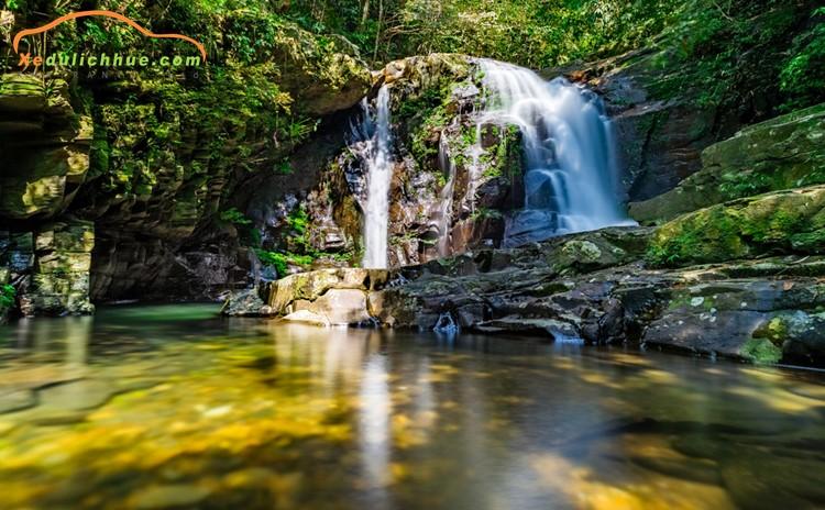 Tuyệt đối đừng bỏ qua vườn quốc gia Bạch Mã khi đi du lịch xứ Huế