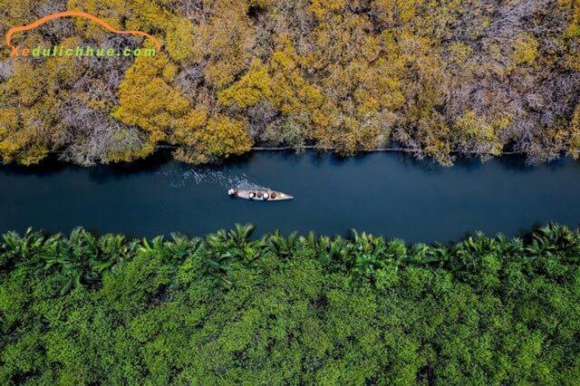 rừng Rú Chá